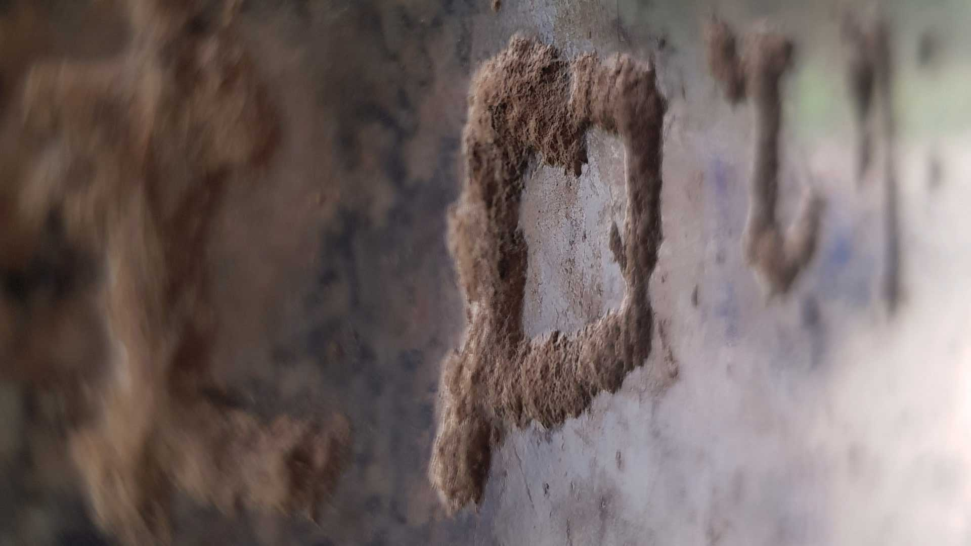 Barabar-BAM-film-granit-miroir-pyramide-inde-yoga-archeologie-baleine-granit-jerome-gadeyne